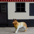 Guard dog - Foto Stock