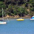 Stock Photo: Sailing boats mooring