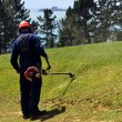 Man mowing a lawn with weedeater — Foto de Stock