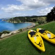 Stock Photo: Pair of twin yellow kayaks