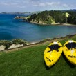 Pair of twin yellow kayaks — Stock Photo #13828183