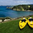 Pair of twin yellow kayaks — Stock Photo