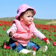 Baby girl in a red poppies field — Stock fotografie