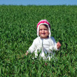 Royalty-Free Stock Photo: A baby in a green field.