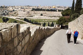 View of Jerusalem from Mount of Olives — Stockfoto