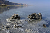 Dead Sea Mud Mineral — Stock Photo