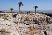 Tel MegiddoIsrael — Stock Photo