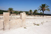 Tel Megiddo Israel — Stock Photo