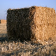 Bales of hay - Foto Stock