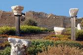 Antika kolonner på caesarea — Stockfoto