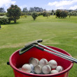 Golf club with bucket full of balls — Stock Photo