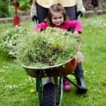 Home gardening — Stock Photo #14436167