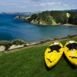 Stockfoto: Pair of twin yellow kayaks