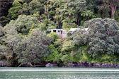Whangaroa harbor New Zealand — Stock Photo