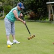 Croquet Game — Stock Photo #16276889