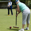 Croquet Game — Stock Photo #16276893