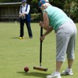 Croquet Game — Stock Photo