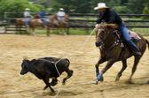Rodeo — Stock Photo