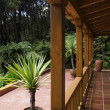 Tropical patio  — Stock Photo #16342033