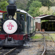 Bay of Islands Vintage Railway — Stock Photo
