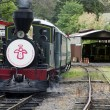 Bay of Islands Vintage Railway — Stock Photo #16342071