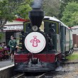 Bay of Islands Vintage Railway - Stockfoto