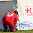 Stock Photo: Red Cross volunteer