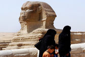 Le grand sphinx — Photo