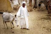 Nubiya — Stok fotoğraf