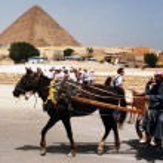 Egypt Travel Photos - The Great Pyramids in Giza — Stock Photo