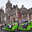 Catedral Metropolitana in Mexico City - Stock Photo