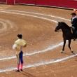 图库照片: Bull-fight in Plazde Toros Bull Ring Mexico City