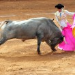 Stock Photo: Bull-fight in Plazde Toros Bull Ring Mexico City