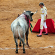 Bull-fight in Plaza de Toros Bull Ring Mexico City - Stock Photo