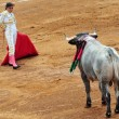 Bull-fight in Plaza de Toros Bull Ring Mexico City — Stock Photo