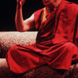 The 14th Dalai Lama of Tibet — Stock Photo #17354873