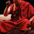 The 14th Dalai Lama of Tibet — Stock Photo #17354925