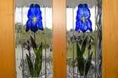 Purple Iris Flowers — Foto de Stock