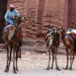 Petra in the Hashemite Kingdom of Jordan — Stok fotoğraf