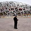 Beijing National Stadium in China - Stock Photo