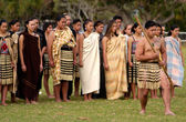 Waitangi Day - New Zealand Public Holiday — Stock Photo