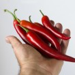Chili pepper — Stock Photo