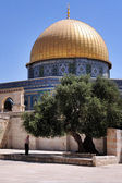 Temple Mount and Al-Aqsa Mosque in Jerusalem Israel — Stock Photo