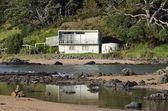 Vzdálené dávky rekreační dům na venkově nového zélandu — Stock fotografie