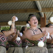 Stock Photo: Waitangi Day and Festival - New Zealand Public Holiday 2013