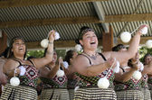 Waitangi Day and Festival - New Zealand Public Holiday 2013 — Stock Photo