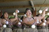 怀唐伊日和节日-新西兰公众假期 2013 — 图库照片