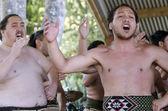 Waitangi Day and Festival - New Zealand Public Holiday 2013 — Stock Photo