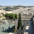 Mount of Olives in Jerusalem Israel — Stock Photo #20054783