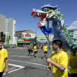 Wellington Chinese New Year Snake — Lizenzfreies Foto